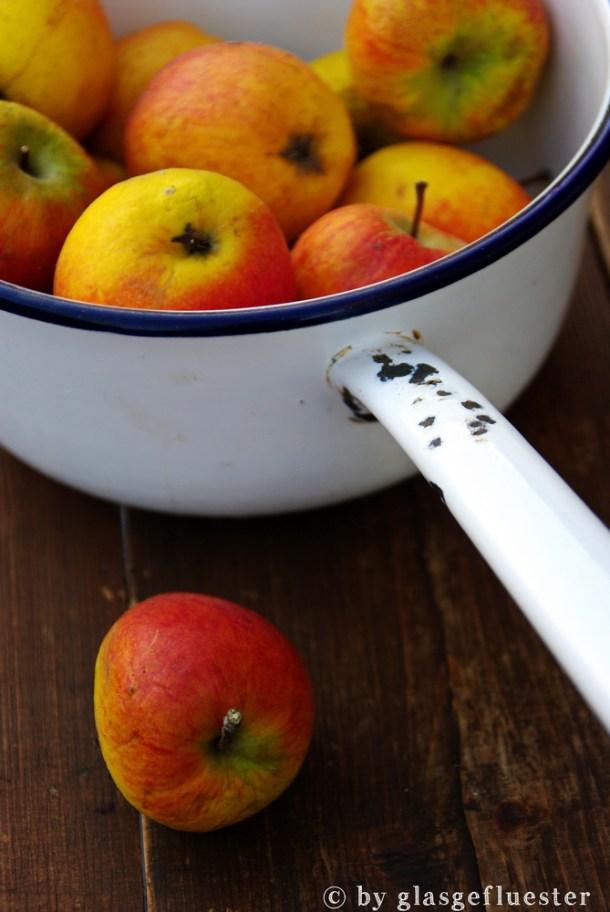 Apfelketchup by Glasgefluester 1 klein