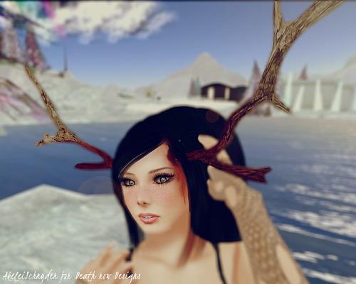 Antlers3