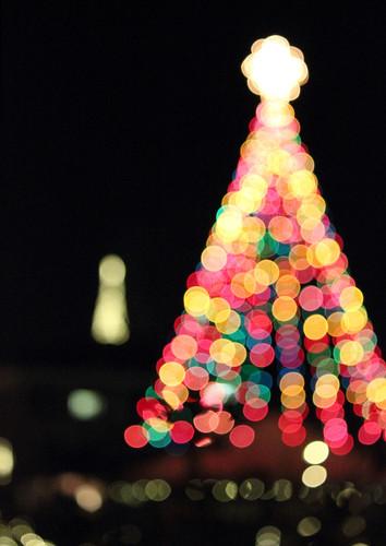 42 - Holiday Lights