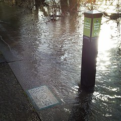 North Bank Path Sign Flooded