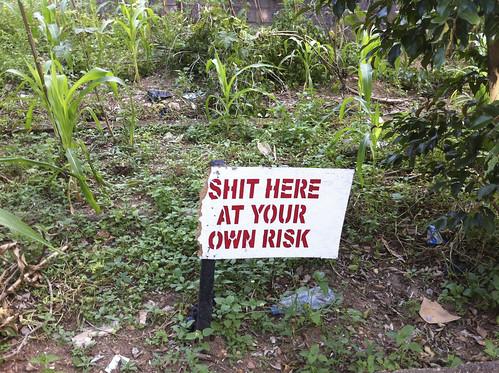 Sign Of The Times. Urban farming in Gwarimpa Abuja Nigeria by Jujufilms