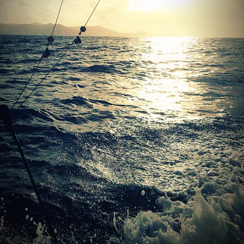 My first deep #sea #fishing trip... #boat #ocean #sun