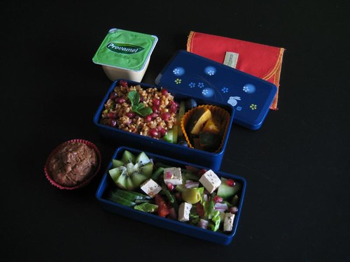 Pomegranate Bento #169