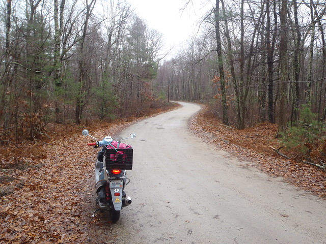 Genuine Buddy scooter out for a ride in the woods of Rhode Island in the rain, in the cold, the day before Thanksgiving