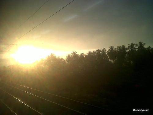 Morning Sun and the Rail tracks by Srividya Ram