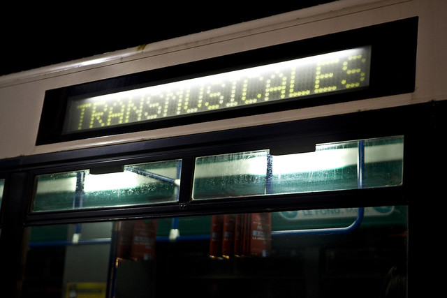 Trans Musicales 2011