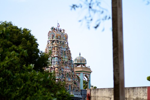 A major hindu temple site in greater Mannar (2)
