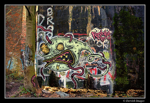 Derelict In The Woods - Graffiti