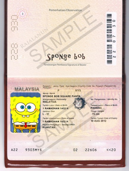 Sample Submitted Passport