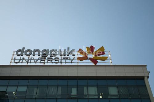 DonggukU2web