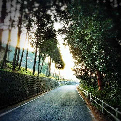 この道の向こうには… #iphonography #instagram #iphone4s