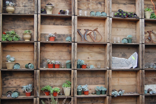 Succulents, Rust and Wood