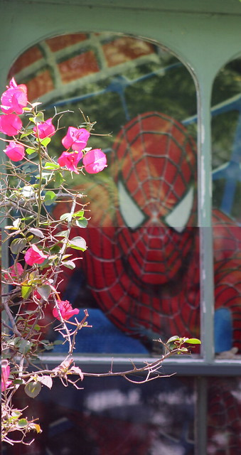 Spiderman comes to visit