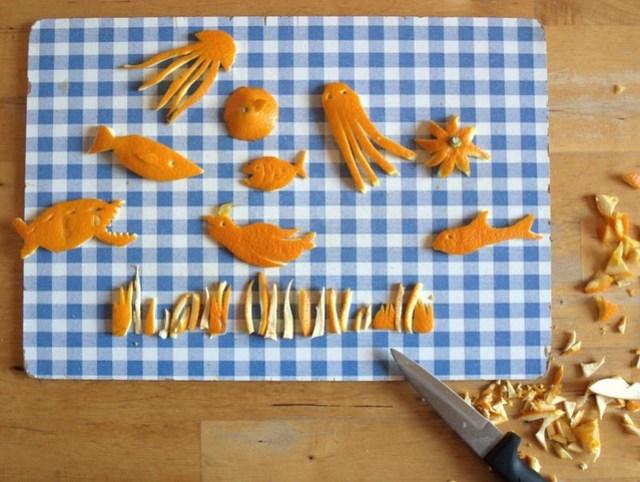 Orangenfisch (3)