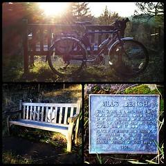 Bill's Bench
