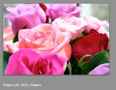 Screen shot 2012-01-10 at 12.08.55 PM