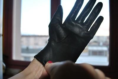 gant 7
