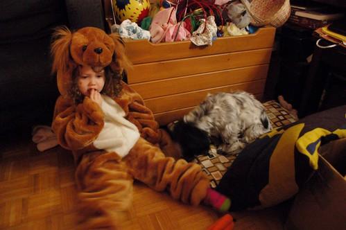 puppy glynis