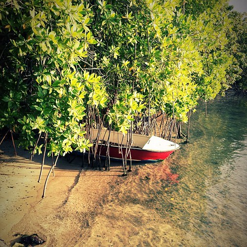 Little #red #boat in a little #lagoon...