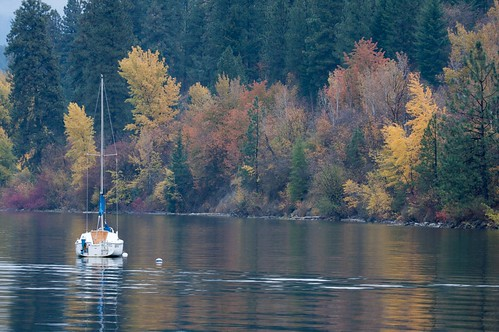 Sale Boat Autumn