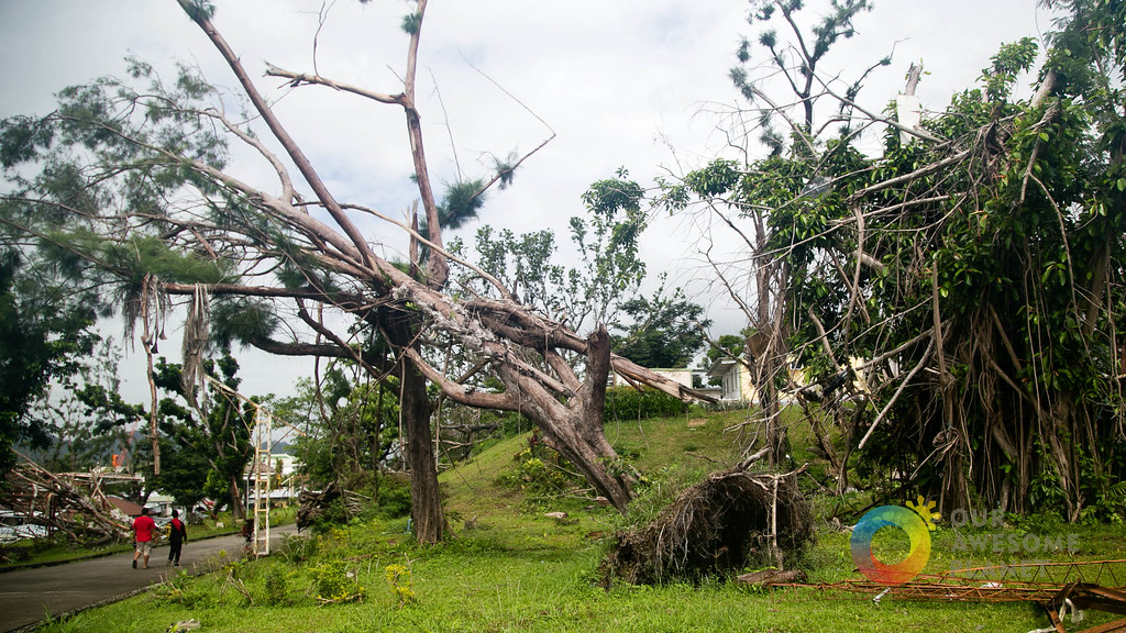 Tacloban 140 days after Our Awesome Planet-5.jpg