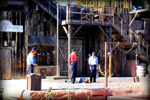 Wild West Stunt Show