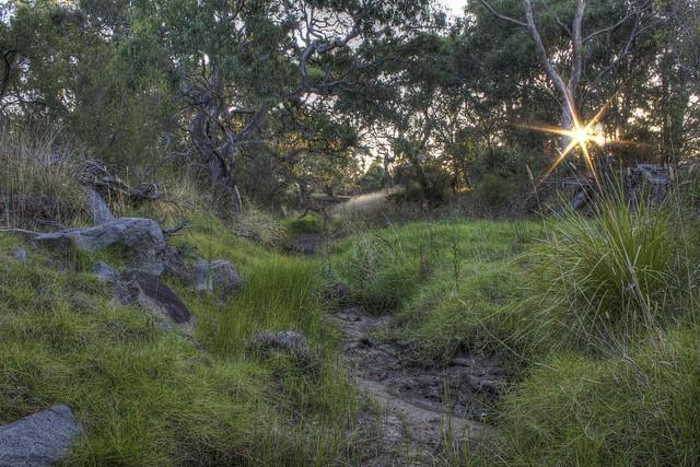 Greenvale Creek 2012-02-14 (_MG_2530_1_2) HDR