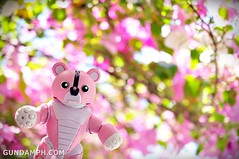 Pink Bearguy at ilocos