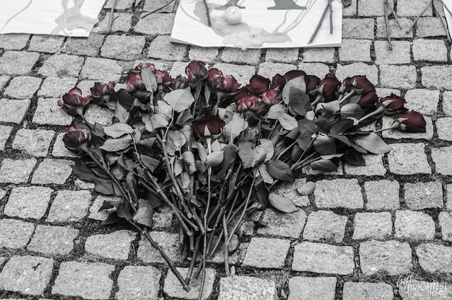 vigil (16 of 104)