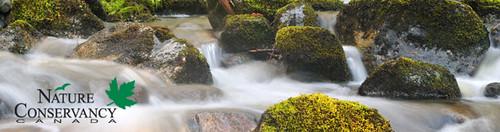 kvamua_creek_rivers_inlet_ncc_email_header