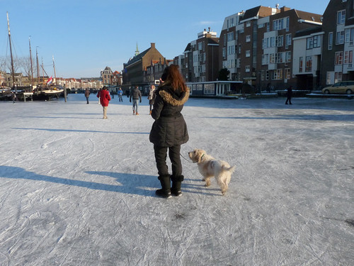 Walking the dog on the ice