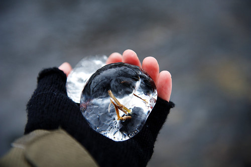 Frozen by Isoscelez