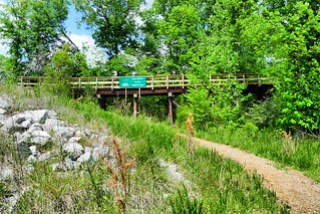 Palmetto Trail Trestle