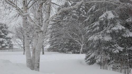 02 February 2012