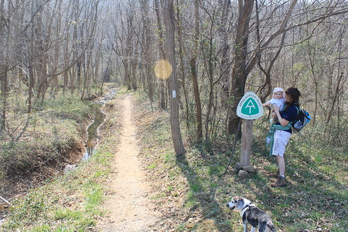 Manassas Gap Hike - Trailhead