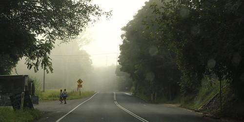 The morning school run