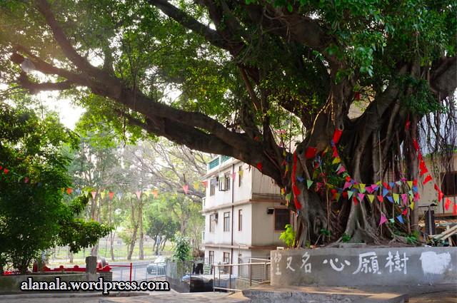 Wish-Making Tree at Fanling Wai