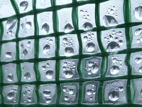amazing water droplets in polytunnel grid by rejectamenta