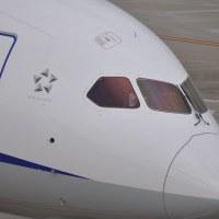 【Photo】「APO 120-400mm F4.5-5.6 DG OS HSM」を持って羽田空港に行ってきた。【Airport】