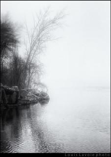 Vive la brouillard pour faire de belles photos (4/6)