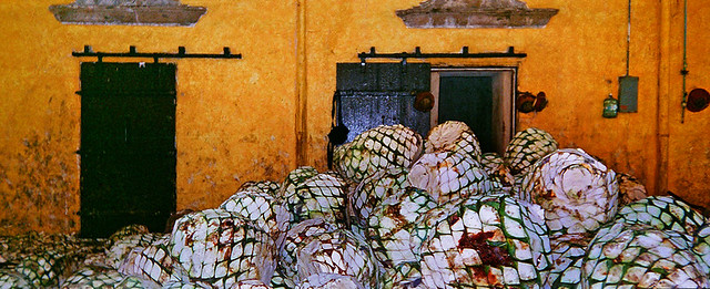 hornos (ovens) in a tequila factory (Tequila, Mexico)