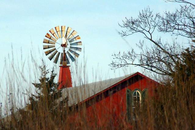 Morning Windmill