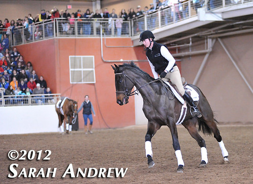 Tiffany Catledge and Solidify put on their game faces and perform in front of a standing-room-only crowd at the finale of the Retired Racehorse Training Project Trainer Challenge in Harrisburg, PA.