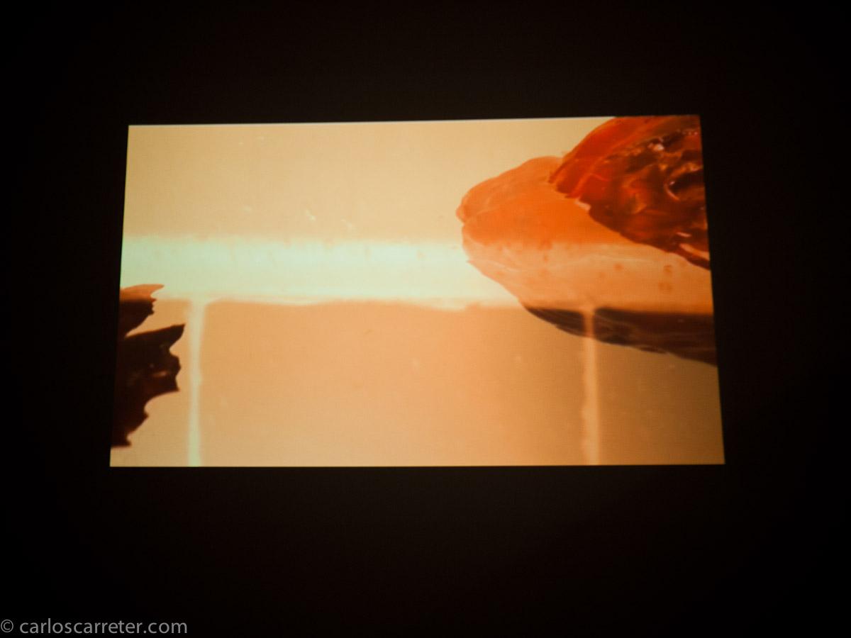 Vídeo por Tana Garrido Ruiz