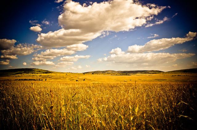 Masai Mara Sky