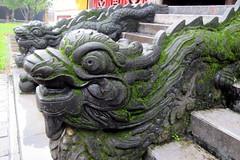 Dragon Steps