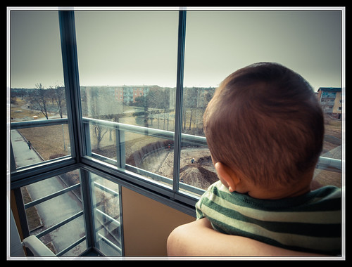 71/366 - Just looking outside by Flubie