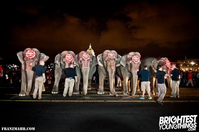 12-03_elephants119-39-Edit