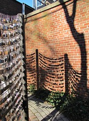 Tags and tree shadow