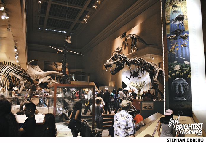 Natural History Museum Dino Exhibit Reopen